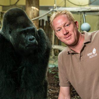 Zootierarzt Dr. André Schüle mit Gorilla
