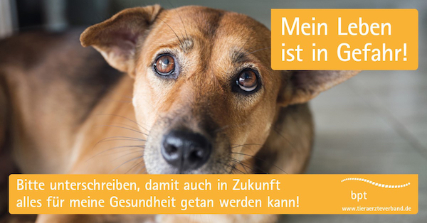 """Plakatmotiv der bpt-Tierärztekampagne gegen eine EU-Verbot von """"Reserveantibiotika"""" in der Tiermedizin."""